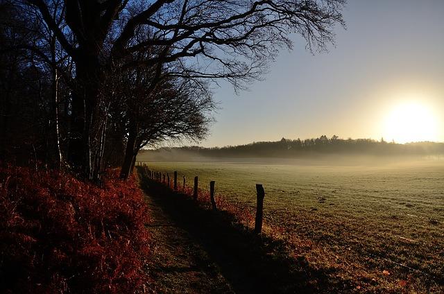 Sonnenaufgang des Frühaufstehers
