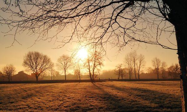 Frühaufsteher im Winter